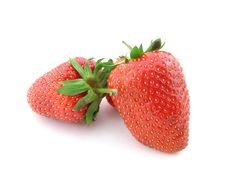 Free Strawberries Stock Photography - 5317112