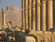 Free Palmyra, Syria Royalty Free Stock Image - 5318106