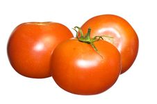Free Tomatoes On White Stock Images - 5318124