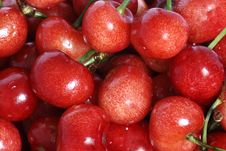 Free Red Cherry Royalty Free Stock Photography - 5318617