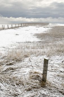Free Fence Post In Winter Field Stock Photos - 5318743