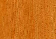 Free Close-up Wooden Beech Bavaria Texture Royalty Free Stock Images - 5319999