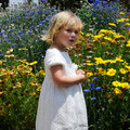 Free Girl With Flower Background Stock Photos - 5323953