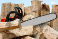 Free Saw On A Background Of Wooden Logs Stock Photography - 5324922