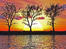 Free Trees Royalty Free Stock Image - 5320526
