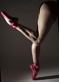 Free Ballerina Royalty Free Stock Photography - 5320757