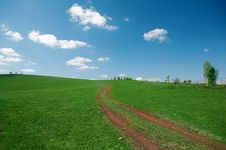 Free Landscape Road In Field Royalty Free Stock Photos - 5321658