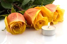 Free Three Orange Roses And A Burning Candle Stock Photography - 5322442