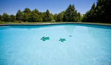 Free Wide Angle View Of A Garden Pool Royalty Free Stock Photos - 5323208