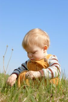 Free The Child Sits In Green Grass Stock Images - 5323884