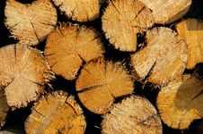 Free Woodpile Of Fire Wood Royalty Free Stock Image - 5325336