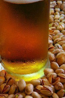Free Beer Mug Royalty Free Stock Images - 5327819