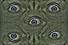 Free Eye Creature Stock Photo - 5327840