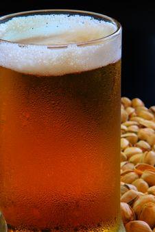 Free Beer Mug Stock Photos - 5327853