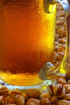 Free Beer Mug Royalty Free Stock Image - 5327866
