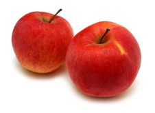 Two Red Bright Apples Royalty Free Stock Photography