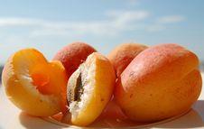 Free Apricot 2 Stock Photography - 5328012