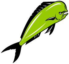 Free Dolphin Fish Royalty Free Stock Photos - 5328088