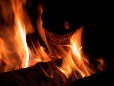 Free Campfire Royalty Free Stock Photo - 5328285