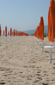 Free Beach Royalty Free Stock Photos - 5329028