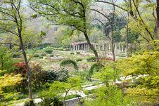 Free Rose Garden Stock Photography - 53234452