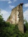 Free Ruins Stock Image - 5333951