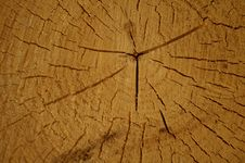 Free Wooden Texture Stock Image - 5330031