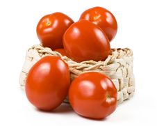 Free Fresh Tomatoes. Royalty Free Stock Photography - 5330187