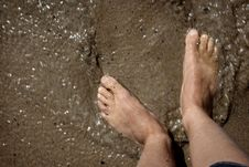Feet In The Mud Royalty Free Stock Photo