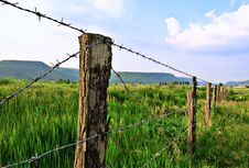 Meadow With Fence Stock Photos