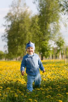 Free A Cute Child Walking On Sunny Meadow Royalty Free Stock Image - 5330966