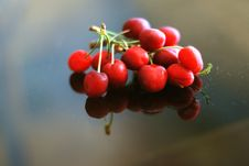 Free Cherries Royalty Free Stock Photos - 5331508
