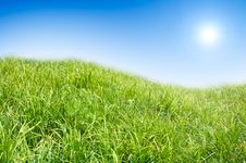 Free Green Grass And Blue Sky Background. Royalty Free Stock Image - 5331526