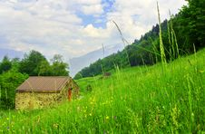 Free House In The Meadow Royalty Free Stock Image - 5335586
