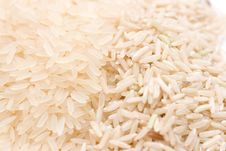 Free Different Type Of Rice Stock Photos - 5336773