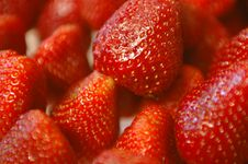 Free Strawberry Royalty Free Stock Images - 5337219