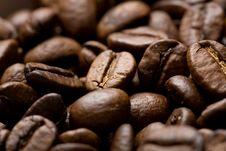 Freshly Roasted Coffee Beans On Sackcloth Stock Image