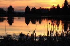 Free Golden Sunset Royalty Free Stock Image - 5338746