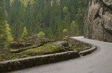 Road In Bicaz Canyon Stock Photography