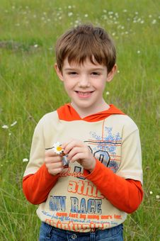 Free Boy&chamomile Royalty Free Stock Photo - 5339065