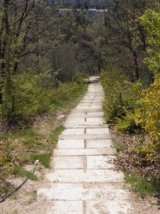 Stairs In The Reserve