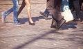 Free Feet Of Pedestrians In A Crosswalk Stock Photos - 53378283