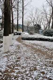 Free Xuanwu Lake Park Snow Scene Royalty Free Stock Photos - 53387558