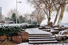 Free Xuanwu Lake Park Snow Scene Stock Images - 53387814