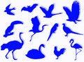 Free Birds Silhouette Royalty Free Stock Photos - 5348868