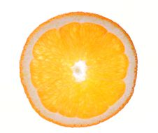Orange Slice Isolated Stock Image