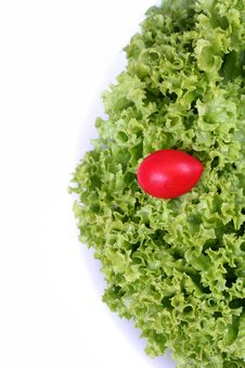 Free Green Lettuce In A White Bowl Stock Image - 5340171