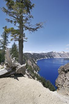 Free Crater Lake Trees Royalty Free Stock Photography - 5342027
