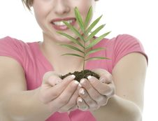 Free A Woman With Plant Stock Image - 5342341
