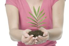 Free A Woman With Plant Stock Photo - 5342630